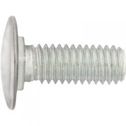 Bumper Bolt Stainless Steel Cap   inch  inch Flat Head WF