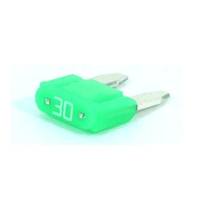 Fuse Mini-Blade 30 AMPS