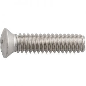 Screw Pan Head Oval Stainless    WF